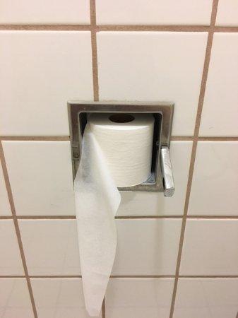 Lake Park, GA: toilet paper - nice isn't it?