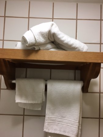 Travelodge Lake Park Valdosta : this is how they put clean towels in room Note one towel for 2 people