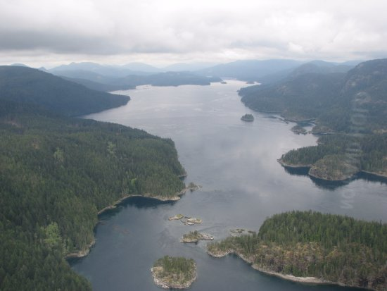 Campbell River, Canada: 49 North 45 Minute Helicopter Tour of Desolation Sound