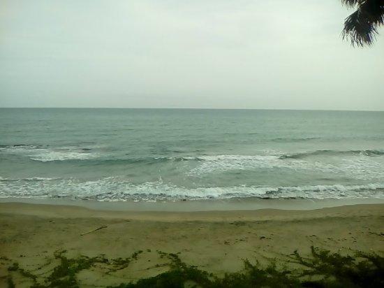 Treasure Beach, Jamaica: View from my room