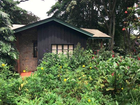 Karatu, Tanzania: Cottage