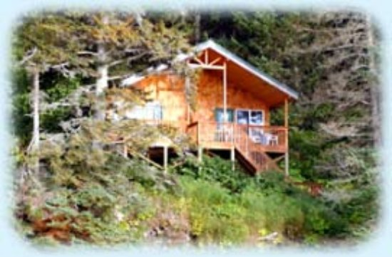 Otter Cove Resort: Our Fireweed cabin overlooking Otter Cove sleeps 4-6 and sits at the head of Sadie Knob Trail
