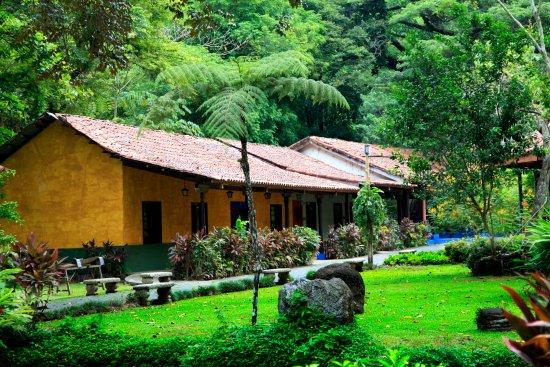 Hotel Villa Lapas: Jardines