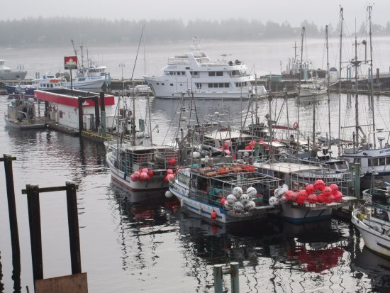 Nanaimo, Canada: A busy working harbour