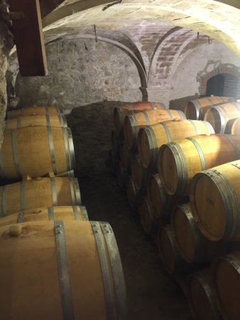Gratallops, Spanyol: The wine cellar where the tasting takes place...sooo cool!