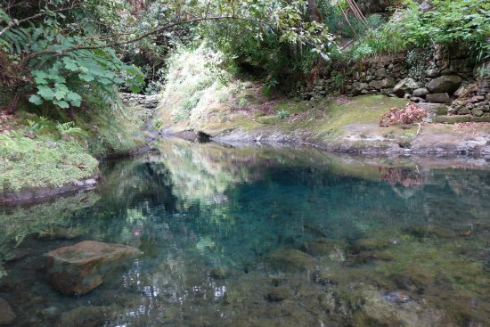 Madeira Happy Tours - Day Excursions: Begining of Levada trail @ Ribeiro Frio