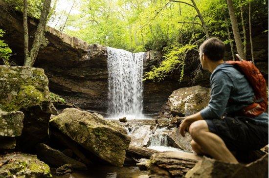 Pennsylvania: Cucumber Falls, Ohiopyle, PA