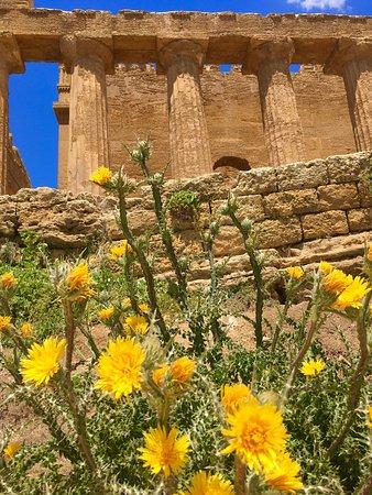 Archäologische Stätten von Agrigent (Tal der Tempel): photo0.jpg