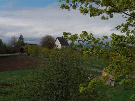 Glasslaven kunstsenter: Like ved ligger også Steinhuset som er fra tidligere enn 1226. Prestgårdshagen ligger inntil.