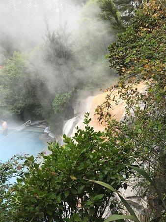Taupo, Nowa Zelandia: pool