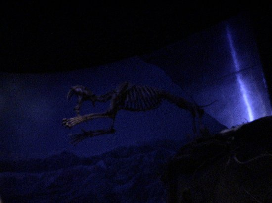 Royal Tyrrell Museum of Palaeontology: Ready to jump on us!