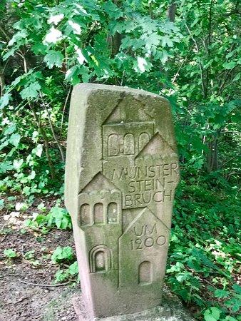 Schlosscafe: Vorbei am Hinweisstein auf den Steinbruch für den Münsterbau (um 1200).