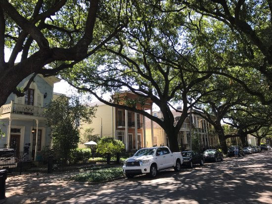 Garden District: photo2.jpg