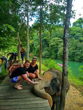 Kok Chang Safari Elephant Trekking: ySgYTnCZd3o_large.jpg