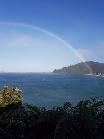 Tairua, Nouvelle-Zélande : View from the bed and breakfast room