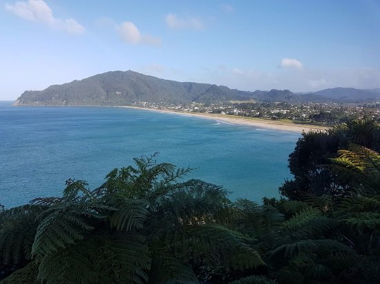 Tairua, Nouvelle-Zélande : More views from the bed and breakfast room