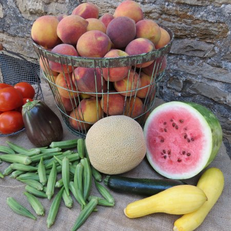 Stonewall, TX: Local fresh produce