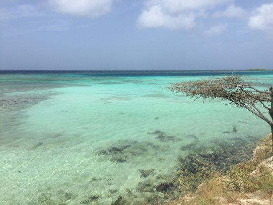 Savaneta, Aruba: photo1.jpg