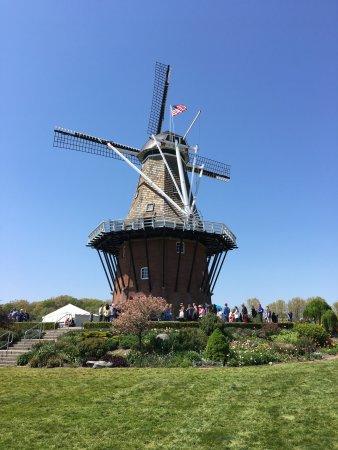 風車島花園照片