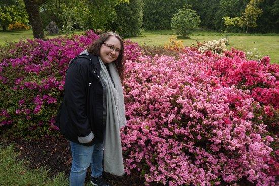 สวนและปราสาทบลาร์นีย์: DSC03251_large.jpg