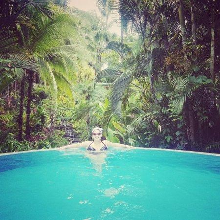 Falls Resort at Manuel Antonio: IMG_20170512_181302_607_large.jpg