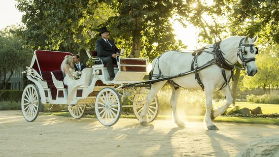 Temecula, Californie : peaceful carriage ride