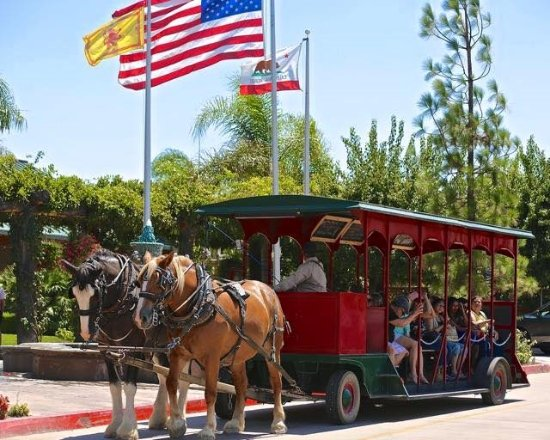 Temecula Carriage Company