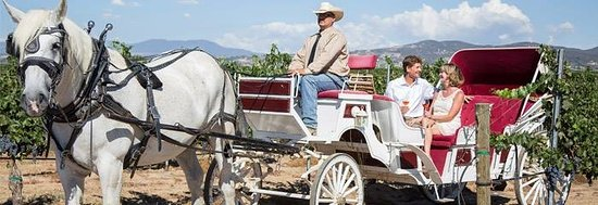 Temecula, Californie : Go Wine Tasting with Horse Power!