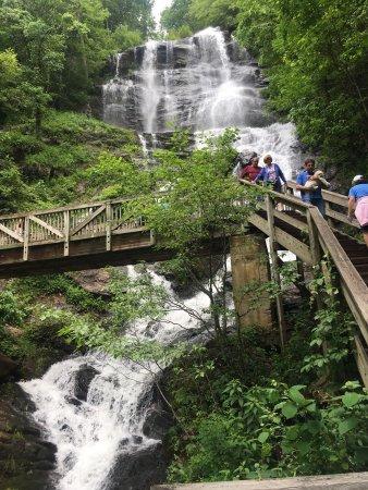 Amicalola Falls State Park: photo6.jpg