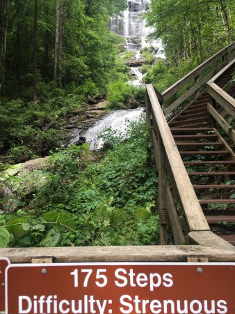 Amicalola Falls State Park: photo9.jpg