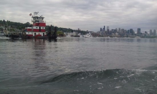 Ride the Ducks of Seattle: duck tour sailing !