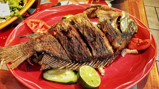 Marlborough, MA: Mojarra Frita