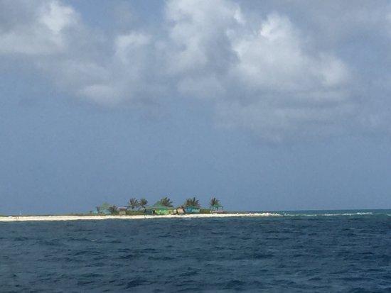 Vigilant Divers Anguilla: photo0.jpg