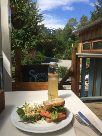 Brackendale, Canada: Salmon burger on gluten free bread served with a view from the patio