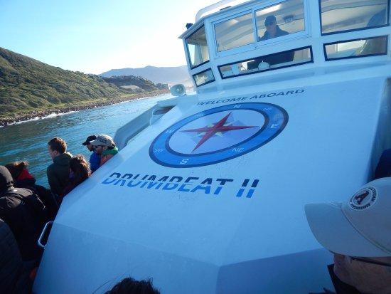 Hout Bay, Republika Południowej Afryki: The Boat!