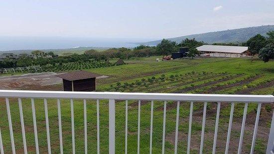 Honaunau, Hawái: Lanai area overlooking the Kealakekua Bay