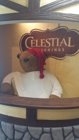 Boulder, CO: Sleepytime Tea mascot- it's the most popular tea that Celestial sells.