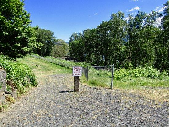 White Salmon, واشنطن: Dog walk