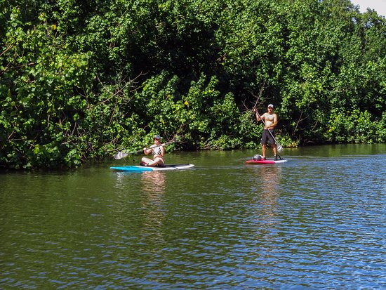 Wailua, HI: people having fun