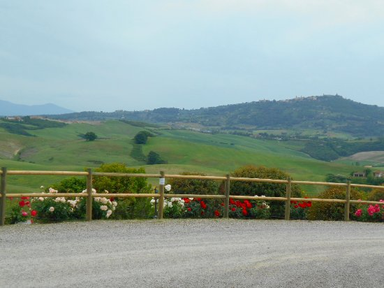 Tuscan Trails: At Altesino