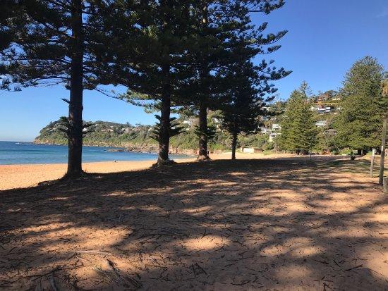 Whale Beach, Australia: photo6.jpg