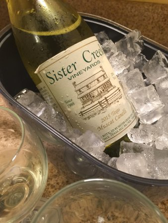 Sisterdale, TX: Muscat Canelli