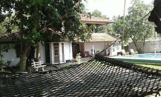 Sea Spray Terrace: Garden