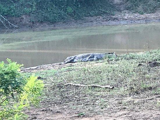 Tissamaharama, Sri Lanka: photo6.jpg