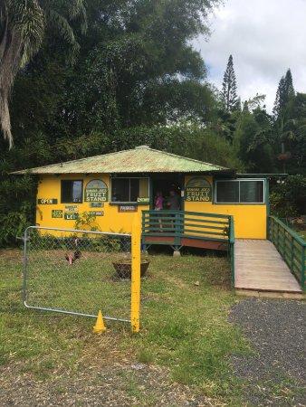 Kilauea, هاواي: photo0.jpg