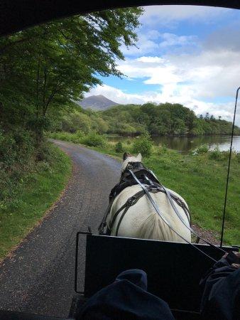Parque Nacional de Killarney: photo2.jpg