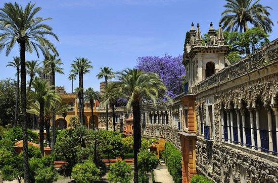 Private Full-Day Tour of Seville from