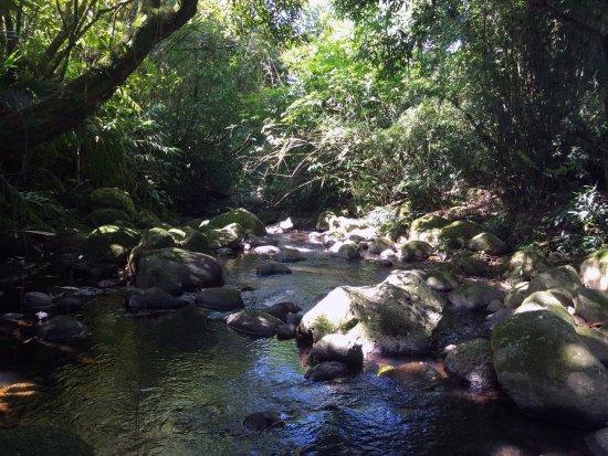 Bras-Panon, Ile de La Réunion : La rivière qui longe la chambre d'hôtes