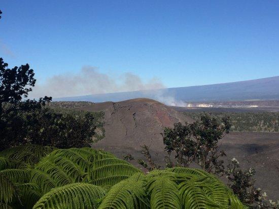 Volcano House: photo2.jpg