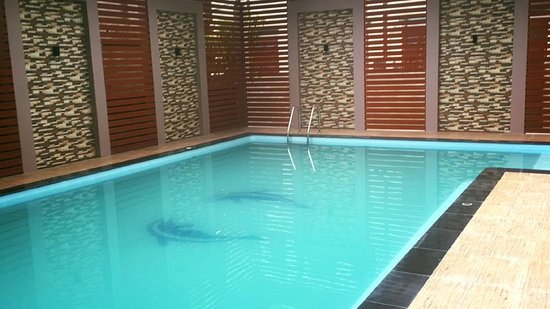 Pool - Picture of Victoria Palace Hotel, Mandalay - Tripadvisor